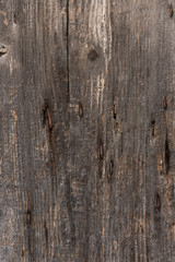 Old wood, background, texture