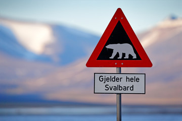 "Red road traffic sign with Polar bear. ""Gjelder Hele Svalbard"" means ""Over All of Svalbard (watch out for polar bears)"". Polar bear with snowy mountain, Svalbard. Travelling in the Arctic."