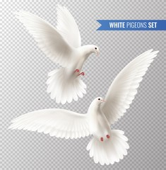 White Dove Set