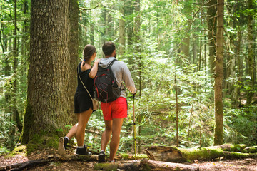 Couple of hikers admiring nature in mountain woodland
