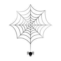 little black spider hangs on cobweb