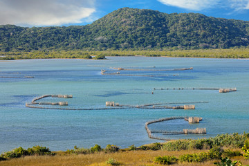 Traditional Tsonga fish traps built in the Kosi Bay estuary, Tongaland, South Africa.