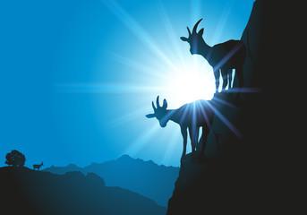 Silhouettes de deux chèvres à flanc de montagne avec une vue sur les alpes à l'horizon.