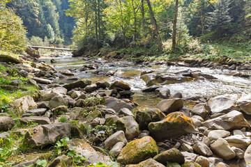 Foto auf Leinwand Fluss Mountain river Prutet landscape in Carpathians, Ukraine.