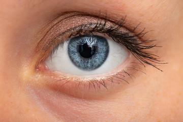 Macro image of female blue eye