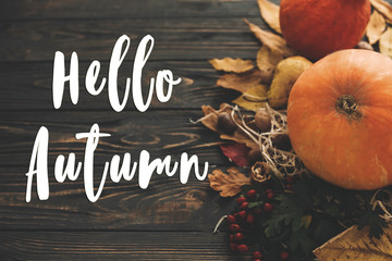 Hello Autumn Text. Hello Fall sign on pumpkin, autumn vegetables with colorful leaves,acorns,nuts, berries on wooden rustic table. Fall seasons greeting card. Atmospheric image Fototapete