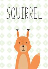 Cute little squirrel. Vector hand drawn illustration.
