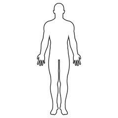Human body silhouette. Vector. Isolated.