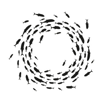 Flock of fish in sea. Vector. Isolated.