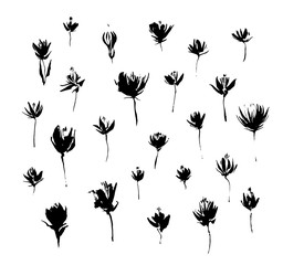 Set of hand drawn modern flowers. Grunge style ink paint elements for design. Black isolated vector on white background