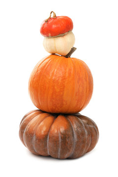 Stacked fresh raw pumpkins isolated on white