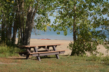 Empty picnic table among trees near lake with receding water level and increasing beach area due to Colorado drought