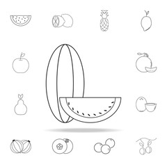 Melon icon. Fruit icons universal set for web and mobile