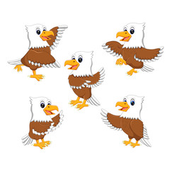 collection of  the  dashing eagle in the different posing