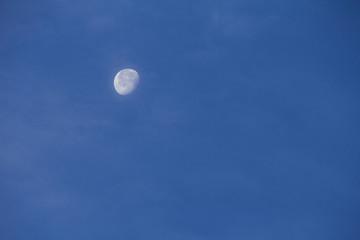 薄曇りの十八夜月
