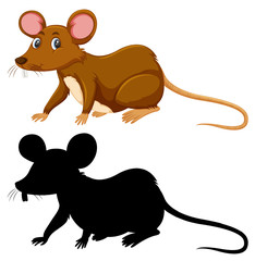 Colour and silhouette of rat