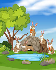 Rabbit in nature landscape