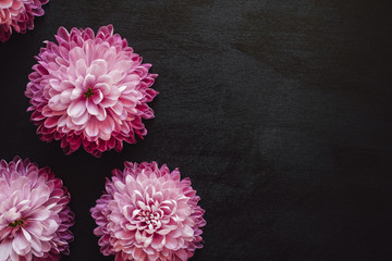 Offset Pink Mums on Black Table