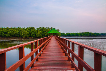 red bridge travel in morning at sea and beach sunlight beauty in nature
