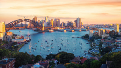 Wall Mural - Panorama of Sydney harbour and bridge in Sydney city