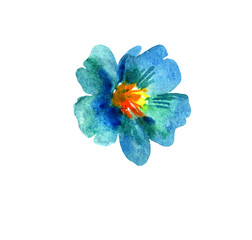 Blue abstract flower watercolor in hand drawn style. Cute flower isolated as design element on white background
