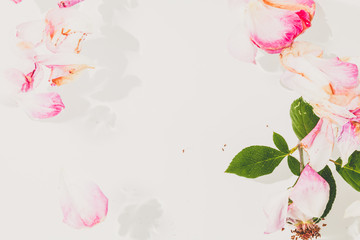 Romantic abstraction. Petals of withered roses on white background