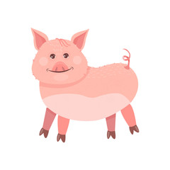 Funny Piggy symbol 2019 new year. The pig stands and smiles