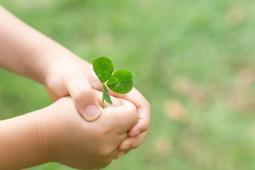 エコロジー 愛 誕生 平和