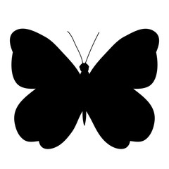 isolated, black silhouette butterfly