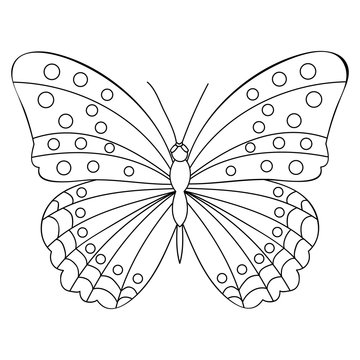vector, isolated, coloring book, butterflies, outline