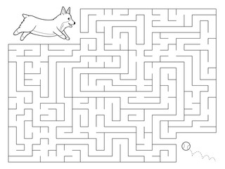 Maze game for kids. Help the Welsh Corgi dog find the right way to a ball. Coloring page. Preschool education. Hand drawn vector illustration.