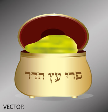 Etrog in a box for Sukkot. vector. Translation of the text: fruit of an elegant tree