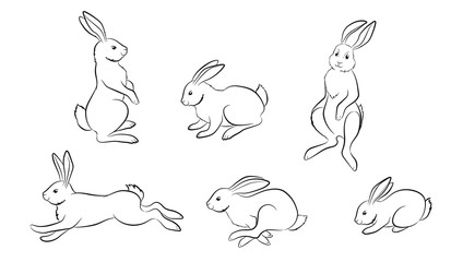 Rabbit. Set of different Rabbit and hare figures
