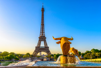 Wall Mural - View of Eiffel Tower from Jardins du Trocadero in Paris, France. Eiffel Tower is one of the most iconic landmarks of Paris