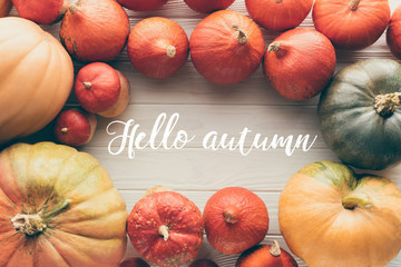 top view of ripe pumpkins on tabletop with words Hello Autumn