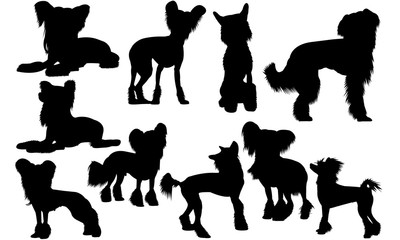 Chinese Crested  Dog svg files cricut,  silhouette clip art, Vector illustration eps, Black Dog  overlay