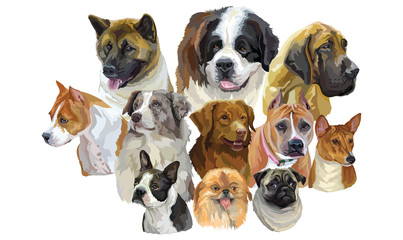 Set of big and small dog breeds