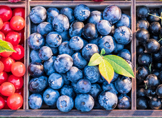 Blueberries in wooden box and other berries. Top view.