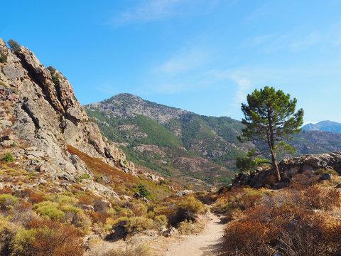 Korsika - Wandern auf dem GR 20