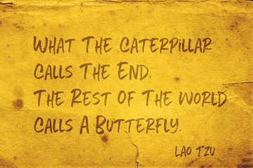 Canvas Prints Butterflies in Grunge calls a butterfly Lao Tzu