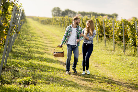Young couple in the vineyard