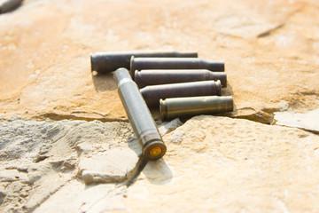 cartridges for shotguns
