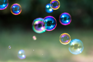 Group of colorful, mostly blue soap bubbles at the green background in a garden