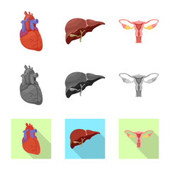 Vector illustration of body and human sign. Set of body and medical stock vector illustration.