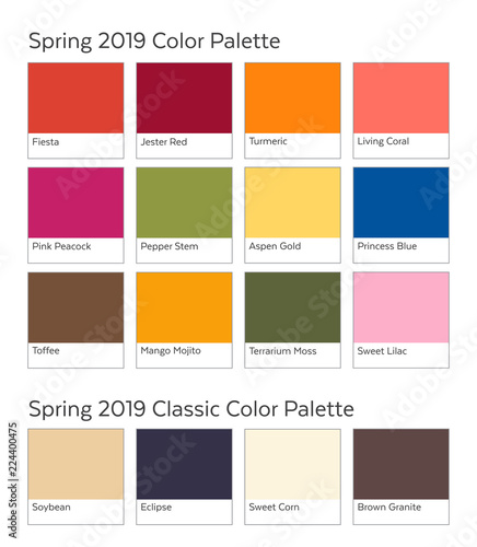 Spring / Summer 2019 Color Palette Example  Future Color