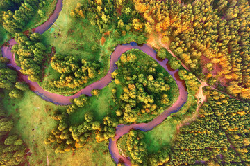 the meandering River forest view from a height