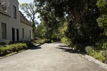 Road in Wine farm