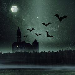 Mystic dark castle in forest