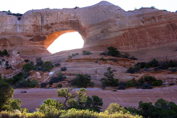 Dawn light passing through Wilson's Arch strikes plants along Highway 191 south of Moab, Utah