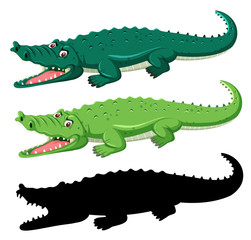 Different graphic type of crocodile